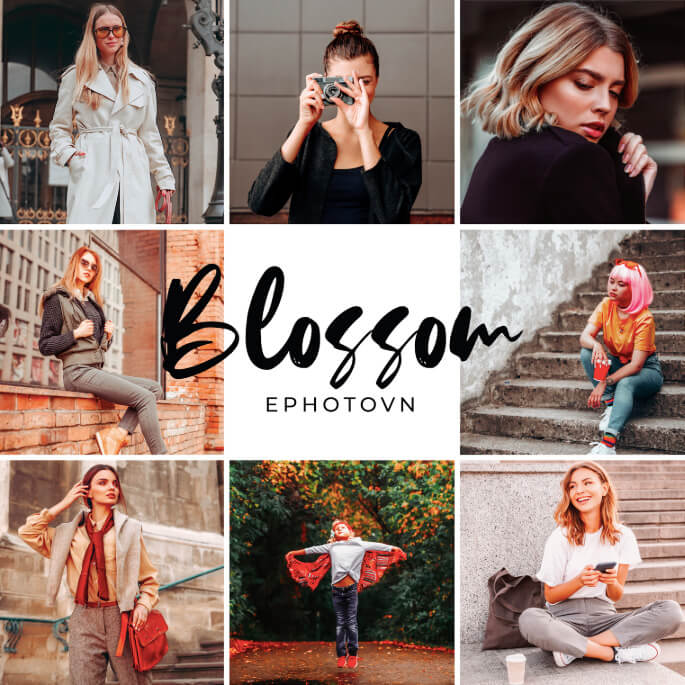 Blossom Free Lightroom Presets